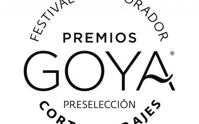 Calificamos para los Premios Goya a partir del 14º Festival Internacional de Cine de Sax.